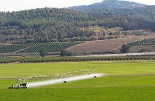 الزراعة في إسرائيل Photo Shutterstock