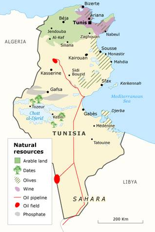 Economy Of Tunisia - Tunisia country political map