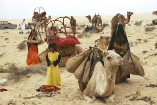 Population Qatar - Bedouins Living Today