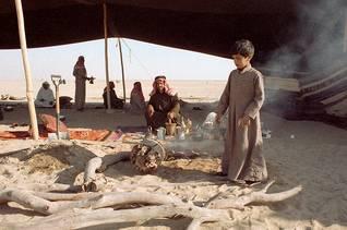 population kuwait - beduin