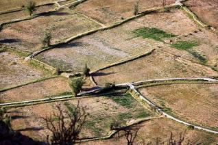 مزرعة جافة Photo Shutterstock