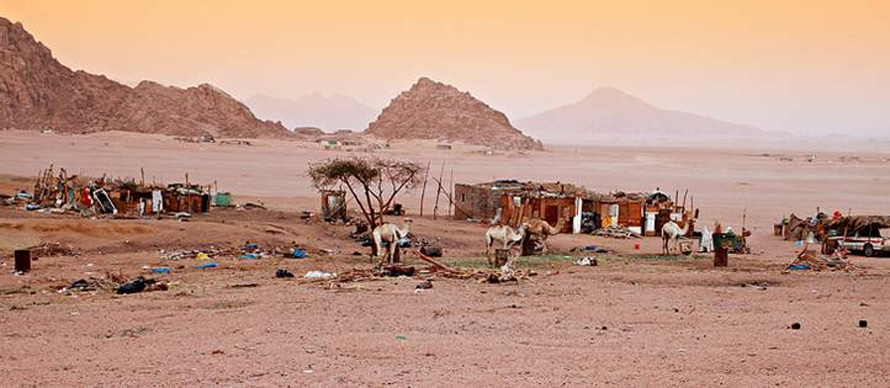 Geography Egypt - Bedouins in the Sinai desert