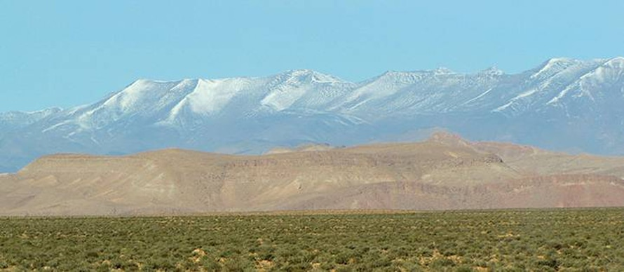 Moroccan desert, with the High Atlas in the background / Photo Fanack