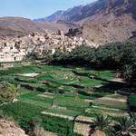Oman Governance - Bilad Sayt