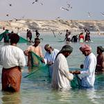 Oman Governance - Fishing Dhofar