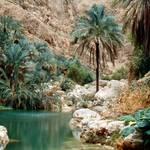 Oman Governance - Wadi Shab