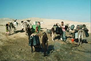 بدو يخرجون الماء من بئر في صحراء النجف Photo HH