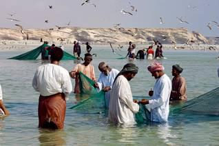Oman Economy - Dhofar fishing