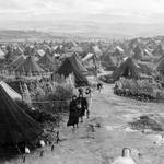نهر البارد، أحد مخيمات اللاجئين الفلسطينيين في لبنان عام 1951 UNRWA Photo Archive