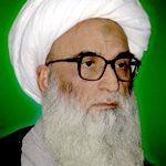 الشيخ بشير حسين النجفي