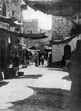 المجتمع في فلسطين