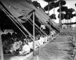 Dikwaneh camp