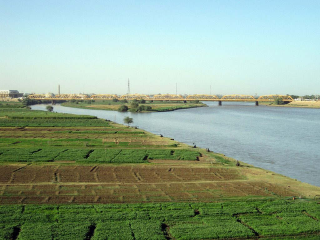 Crop-fields-next-to-the-White-Nile-in-Omdurman_Mohammed-Ali_Fanack