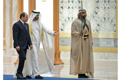 UAE's Foreign Policy – The New Qatar