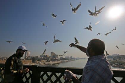 Poetry Defeats Authority: Muzaffar al-Nawab as an Example