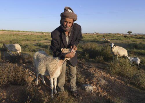 Shepherd's Festival: A Tunisian Celebration of Poetry & Nature Guardians