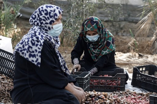 The Pandemic in the MENA Region, a Hardship But Also an Opportunity for Women