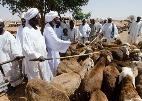 Society of Sudan