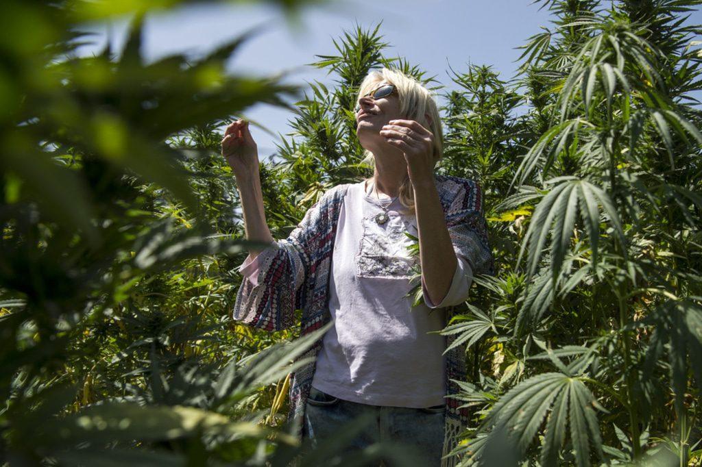 Morocco- Cannabis