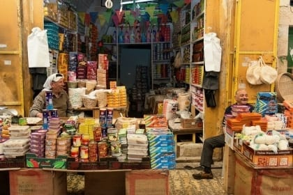 Development of the Palestinian Economy