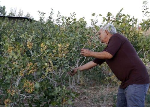 التحديات البيئية في إيران: كيف تحولت المياه إلى أزمة