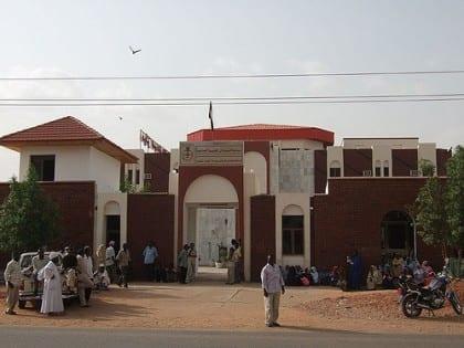 Sudan Heart Center culture and media