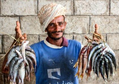 In Yemen, Hodeidah Ceasefire Hangs by a Thread