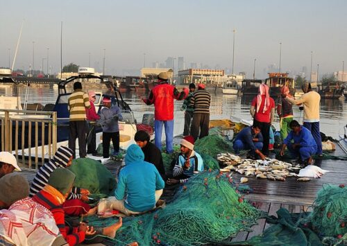 الاقتصاد في قطر