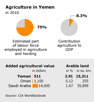 Economy Yemen - Agriculture