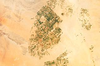 Satellite image of the Wadi al-Sirhan Basin, a large-scale irrigation project in Saudi Arabia / Source: Nasa