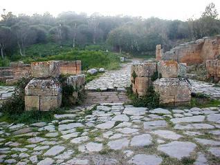 Ruins of Roman Chella, near Rabat / Photo Fanack