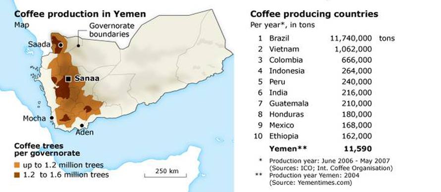 Economy Yemen - Coffee Production