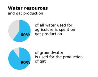 Geography Yemen - Crisis Qat Production