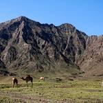 Geography UAE - Al-Hajar Mountains