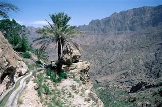 Geography Oman - Land Fertility Irrigation Canal