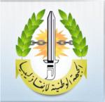 Libya Governance - LNFSL logo