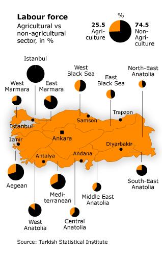Population Turkey - Socio Economic Composition