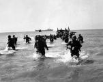 The Suez Campaign
