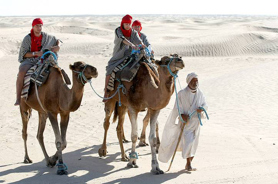 Economy Tunisia - camel