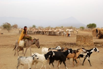 pastoral community in Sudan Economy