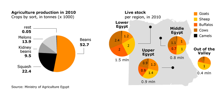 agriculture-and-fisheries_egypt_economy_agriculture_001