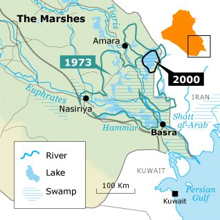 draining-the-marshes_iraq_marshes3_318px