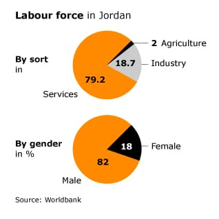 work force and labour migration jordan labour force 318